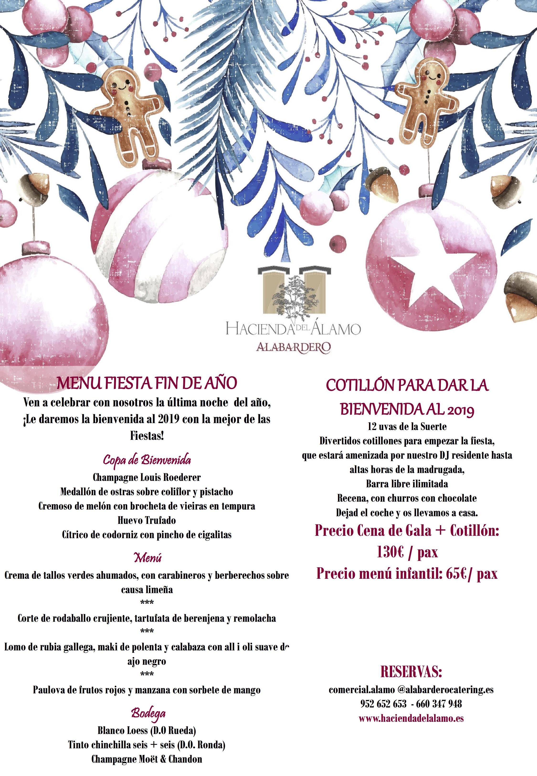 Cena y Fiesta Fin de Año 2018 en Hacienda del Álamo