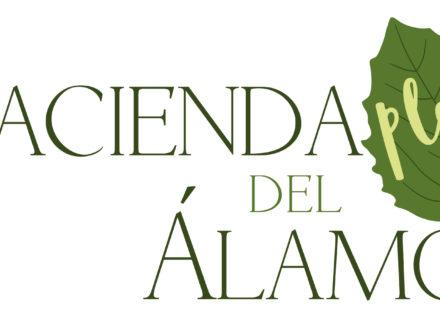 Hacienda del Álamo Play